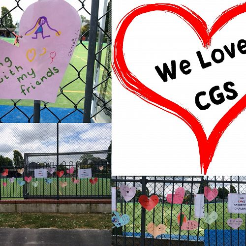 The start of our love for Grammar fence