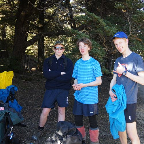 Jack, Sam and Riley at the edge of the bush