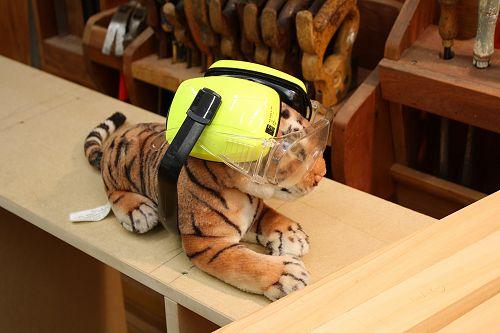 Technology Tiger
