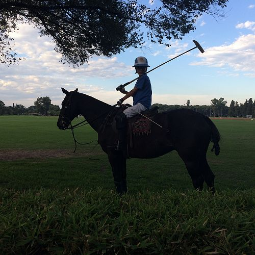Polo player, Jockey Club, Rosario