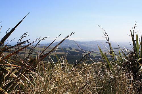 Saddle Hill, Dunedin from Flagstaff
