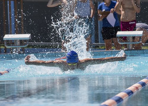 Toby Taylor competing in the Junior Boys Championship butterfly