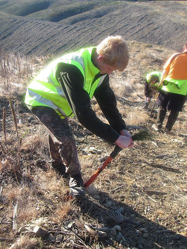 Hamish Prattley tree planting