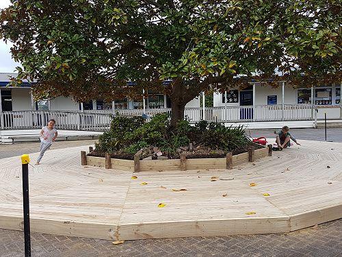 Decking around Magnolia looking good