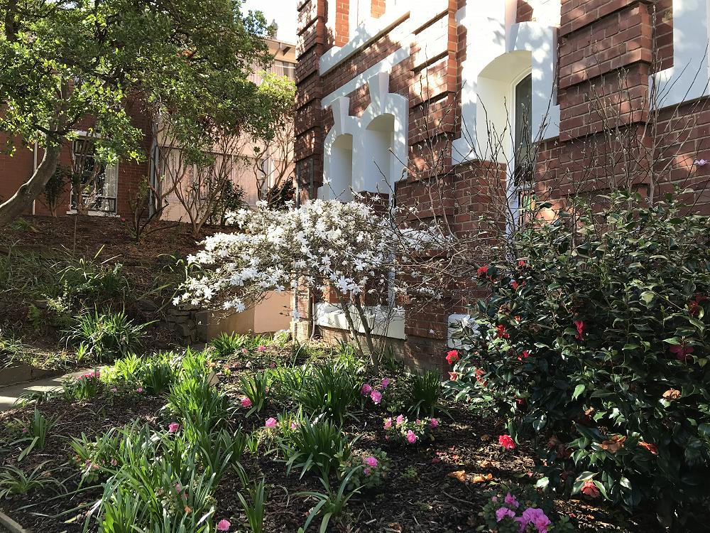 Spring at St Margaret's, September 2018