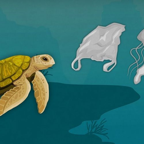 Video: How Much Plastic is in the Ocean?