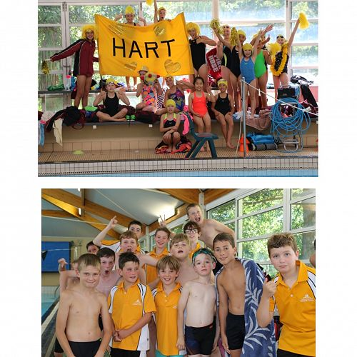 Parr & Hart - House winners at the 2018 Swimming Sports
