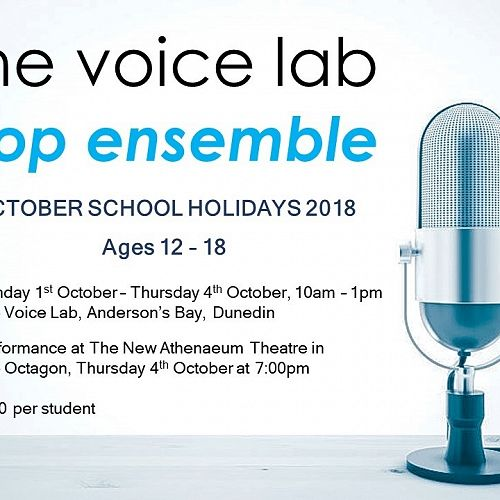 The Voice lab promotion