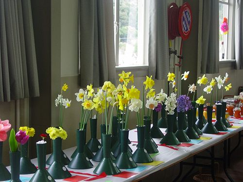 Floral entries at Eisteddfod Competition Day