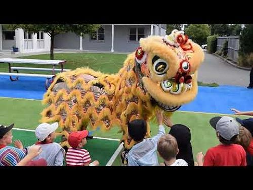 Video: Lion Dance - Chinese New Year