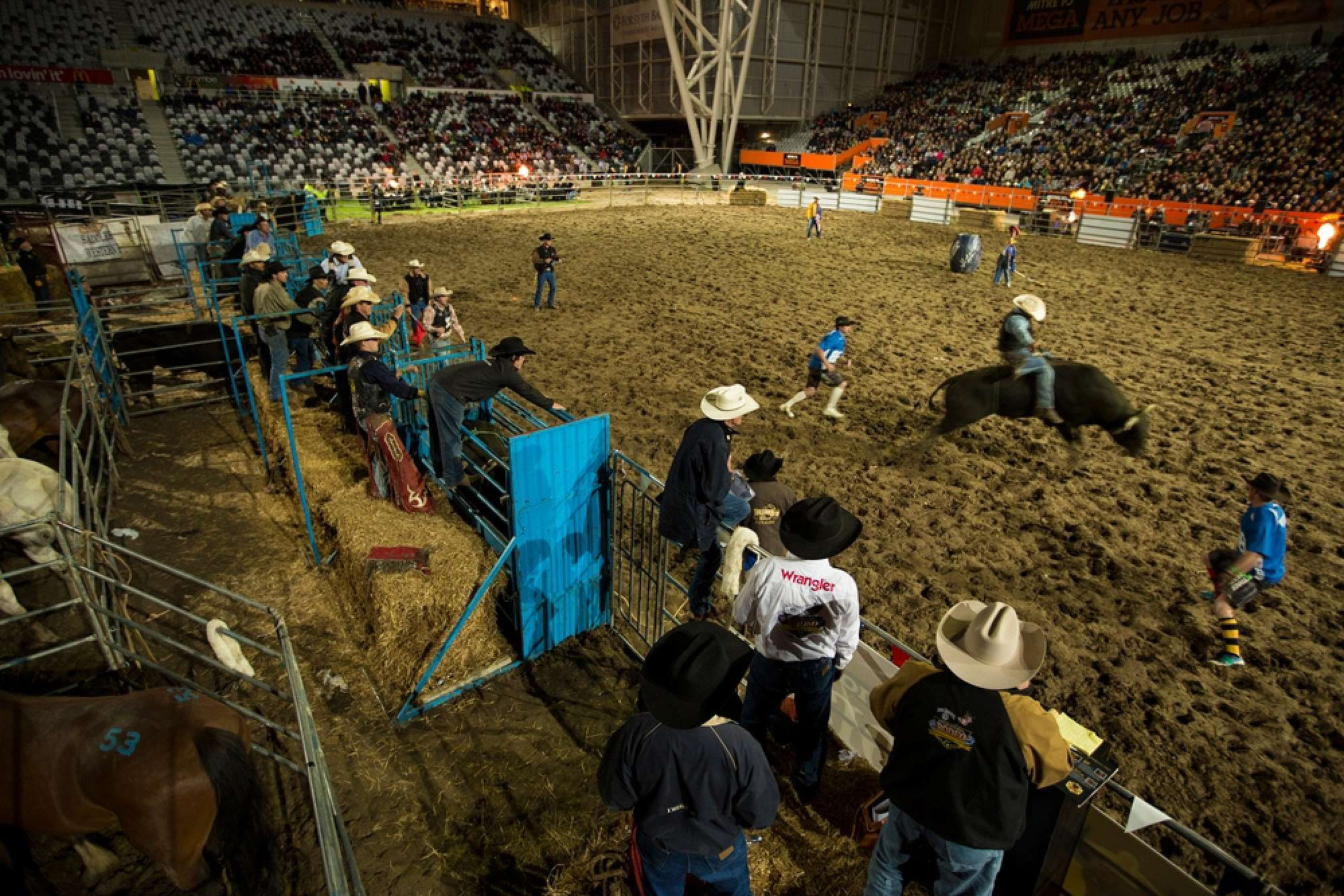 International Rodeo