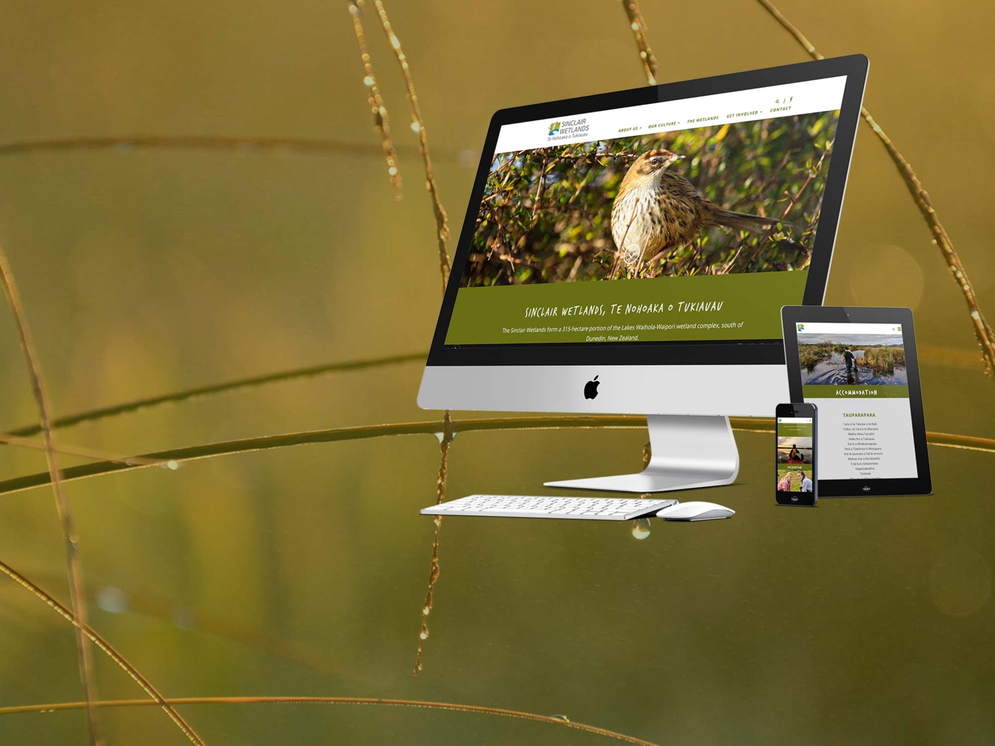 Sinclair Wetlands responsive website development