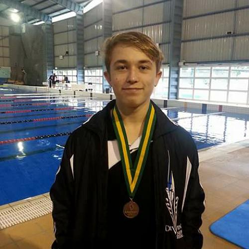 Diving Champion