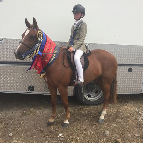 A mane full of ribbons! Quinn Coutts (Y7) on Goosebumps after a very successful few days at the NZ National Show Jumping and Show Hunter Champs in Christchurch.