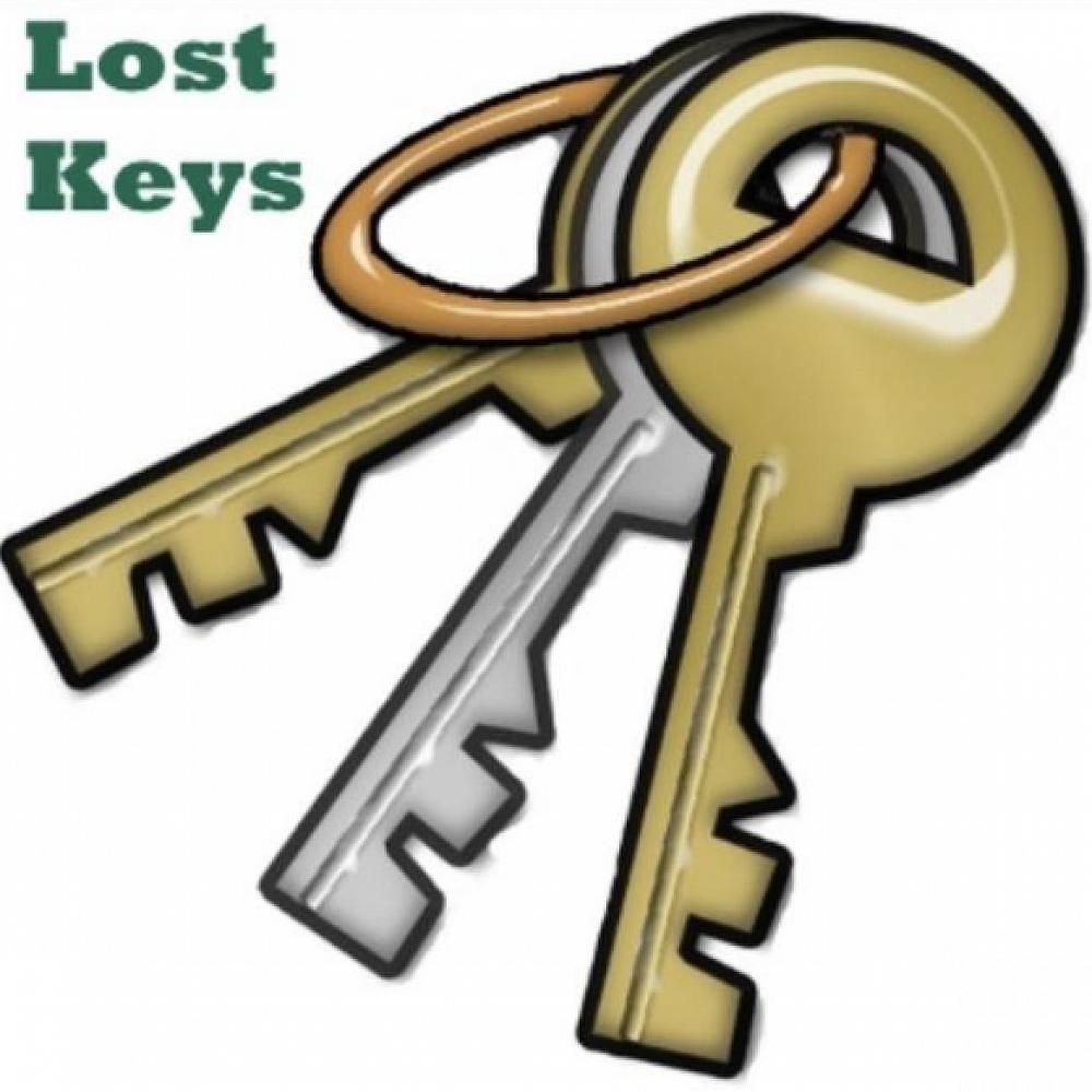 Help Lost Keys At Sunday S Pta Working Bee Yaldhurst Model School Newsletter 29 October 2018