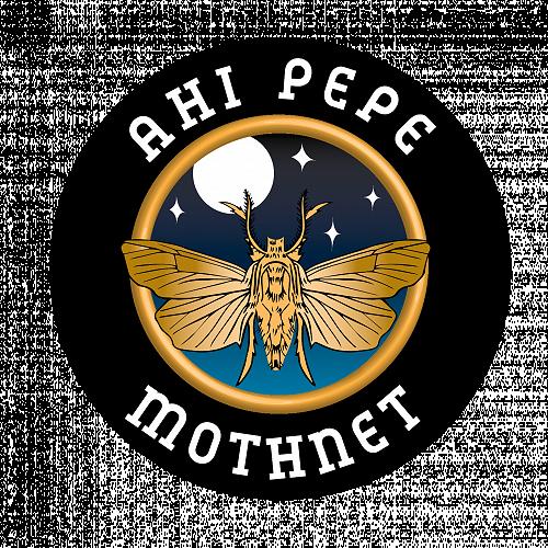 I hikaina te ahi tītī, engari i Whakapoapoa kē i te pepe. The fire was lit to attract the muttonbirds and the moths flew into it