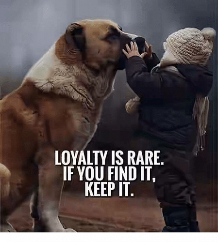 Virtue - Loyalty