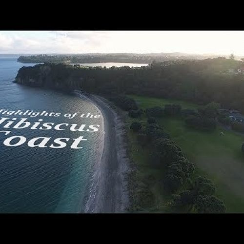 Video: Highlights of the Hibiscus Coast