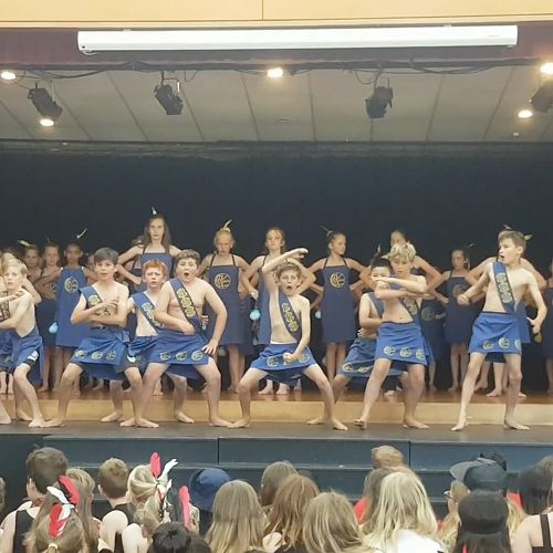 Video: Kapa Haka 2020