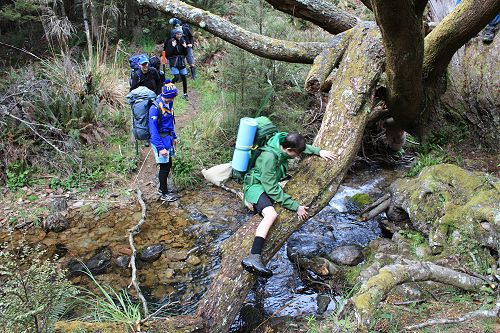 George taking an alternative route at a stream cro