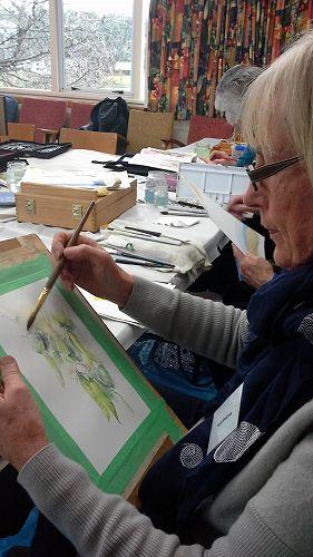Kath McElrea uses watercolour to create beautiful