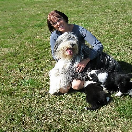 Patricia Jellyman, with her Bearded Collie, Reba and pups.