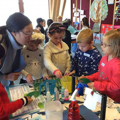 Children learning about materials that absorb water and materials that repel water.