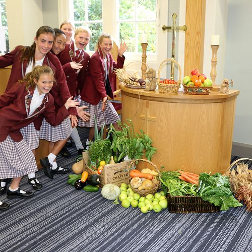 Harvest Festival - Christchurch City Mission Collection 2018