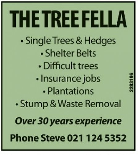 The Tree Fella