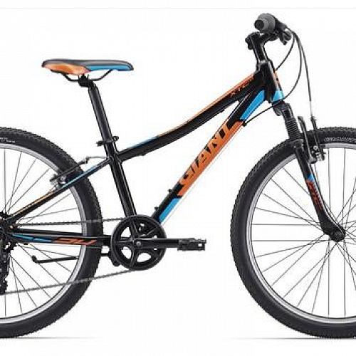 "Giant XTC JR 2 24"" child's bike valued at $405.00 has been sponsored by Bike Otago as the grand prize for #lovetheleith social media competition."