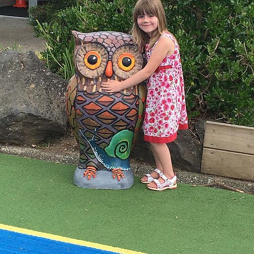 Kauri - Our very own Owl