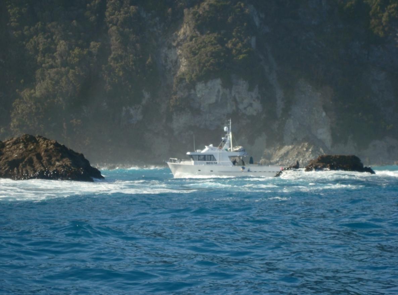 Fiordland Lobster ship.