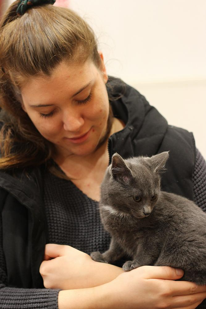 Cat Rescue Dunedin at St Margaret's College