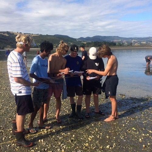 Year 12 Biology - Blueskin Bay