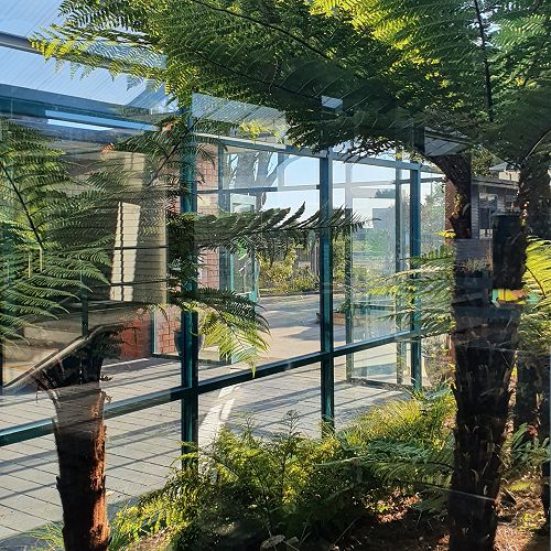 School grounds - the atrium from Careers