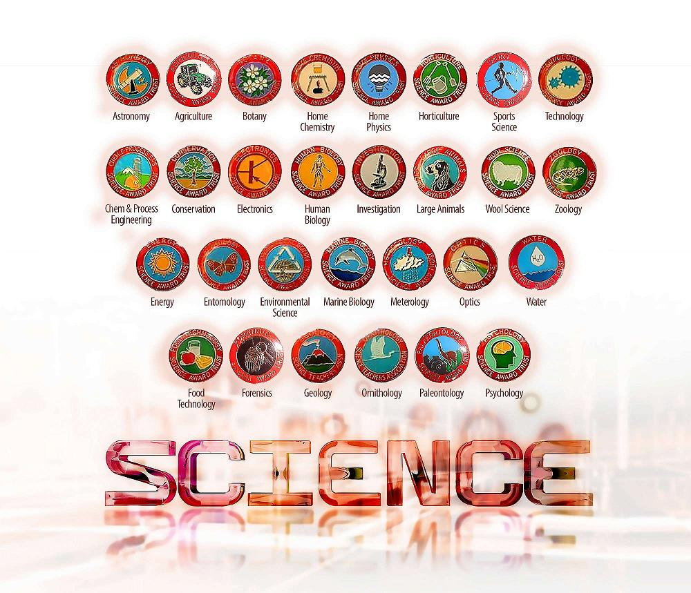 a6e6b7ecf9e Science Award Trust - Science Badges - Casebrook Intermediate School News -  21 February 2019