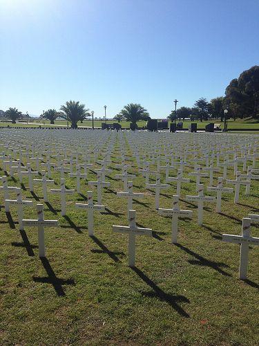 ANZAC Crosses in Timaru