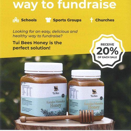 Tui Bees leaflet