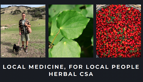 Stephen Parker currently runs Aotearoa's first Herbal CSA (Community Supported Apothecary) and the Gathered Plant Medicine box scheme