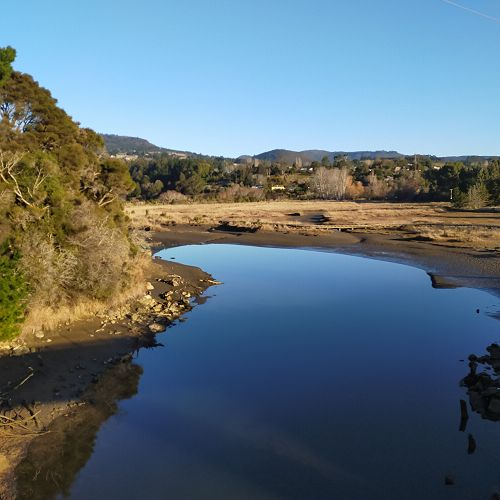Orokonui Estuary - a peaceful place just 20 minutes drive from the city.