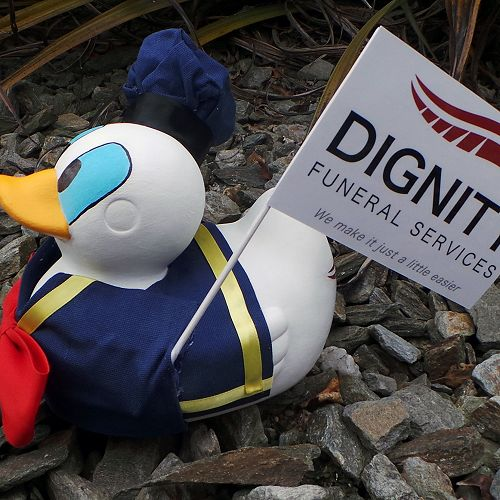 Dignity Duck