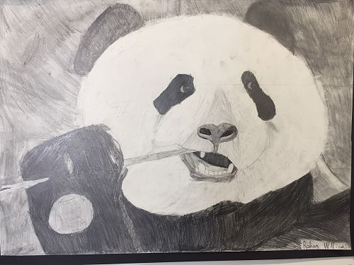 Year 9 Art