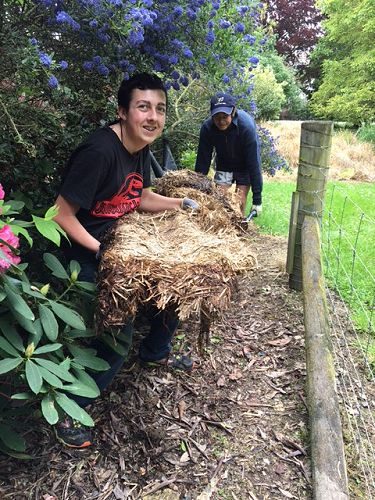 Year 10 Community Service Day