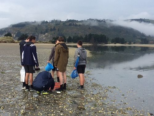 Year 12 Biology Trip To Blueskin Bay