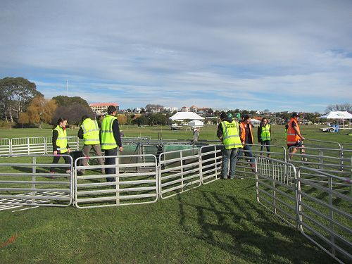 PIA students help out at Young Farmer Competition