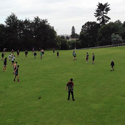 Touch Rugby at Roberts Park