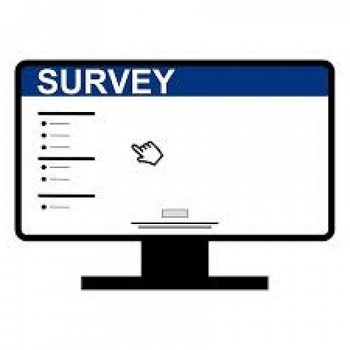 Business Studies Survey
