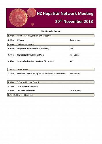 Hepatitis Network Meeting 20 November