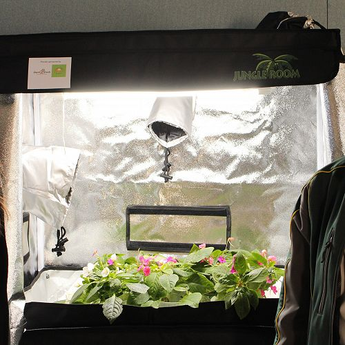 Myah and Rose with one of the five hydroponic Jungle tents donated by NZKGI and Zespri
