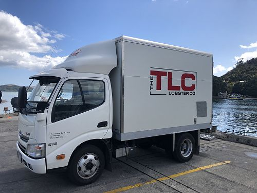TLC truck collects lobsters from the Whitianga wharf.